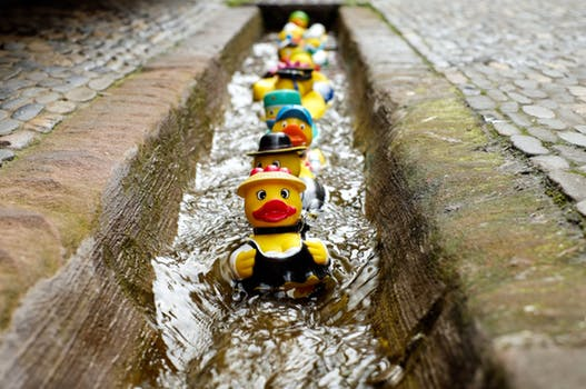 Put All Your Ducks in a Row Before the End of the Year
